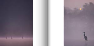Capture d'écran 2014-09-29 à 11.45.49