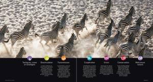 Capture d'écran 2014-10-16 à 08.47.07
