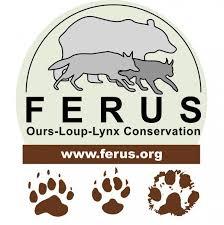 Logo Férus