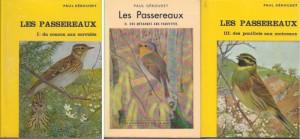geroudet-passereaux-123-500x232