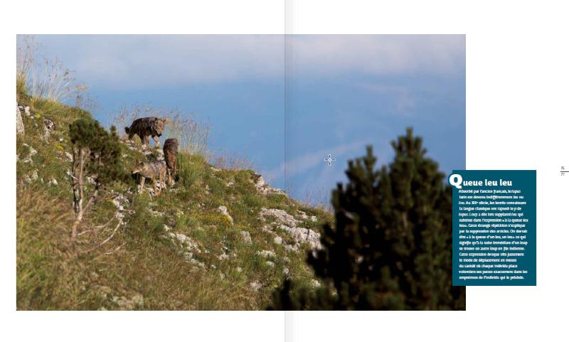 la-vallee-des-loups_589_fr