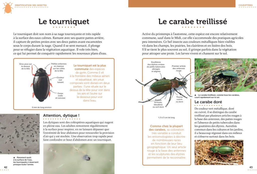CP Le petit guide entomo